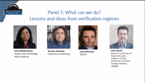 Image of panellists at the SWF and UNIDIR webinar.